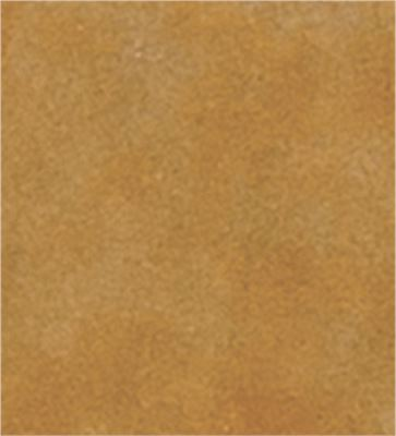 Golden Wheat (Soft Amber with Yellow Undertones)