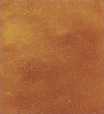 Malay Tan (Medium Buckskin with Orange Undertones)
