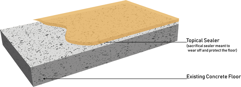 Topical Floor Sealer Diagram
